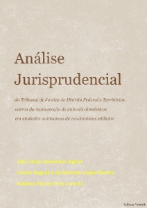 Análise jurisprudencial...