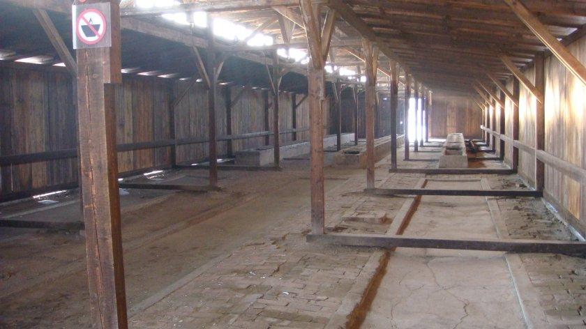 """Interior de um dos galpões. Este era o """"galpão-banheiro"""". Em primeiro plano, vê-se à direita uma área demarcada no chão: era o local no qual era dado banho nos prisioneiros (ficavam em pé e jogava-se água fria com uma mangueira, independentemente da época do ano). Ao fundo vê-se as latrinas (ver abaixo)"""