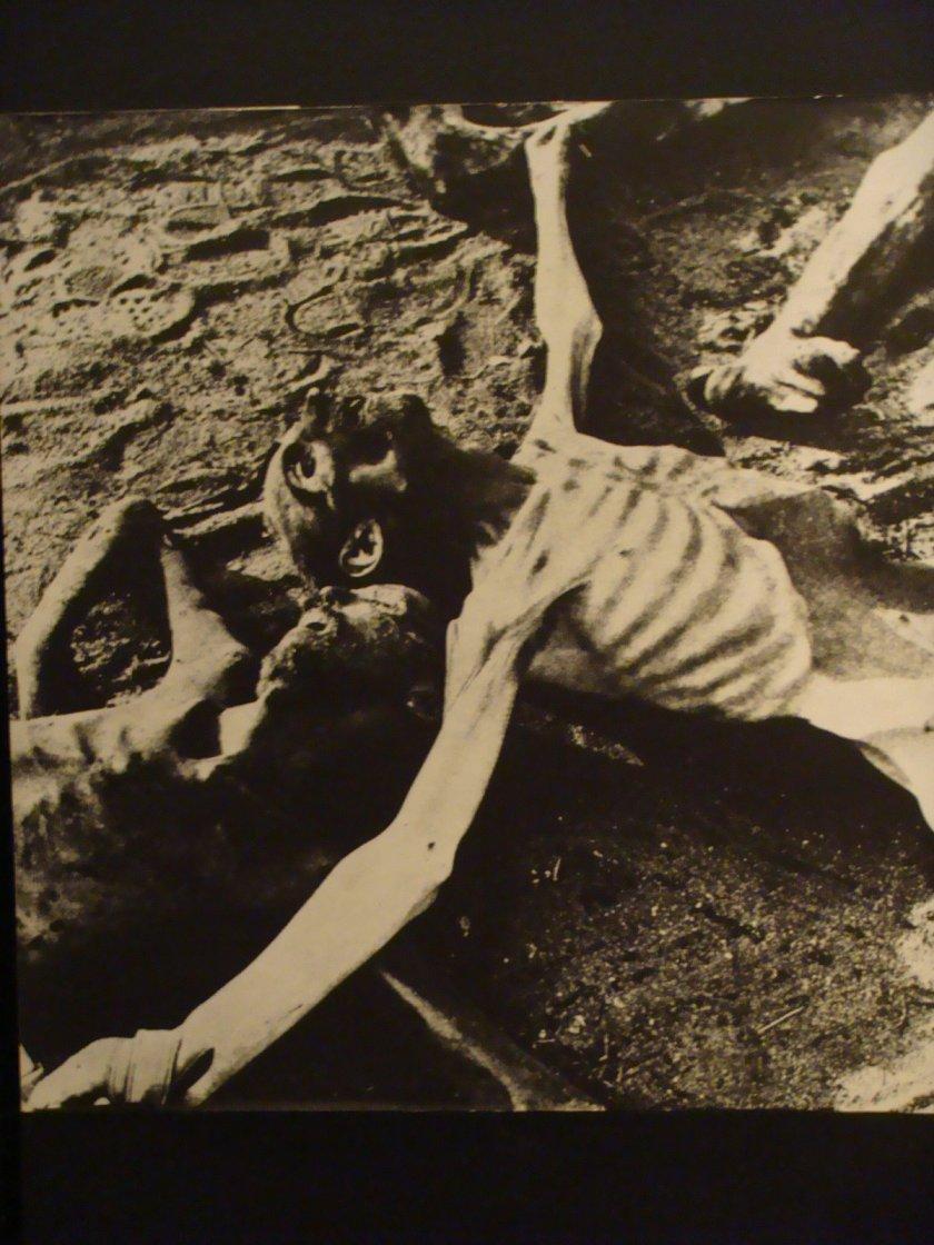 Assassinados pela fome e pelo trabalho forçado